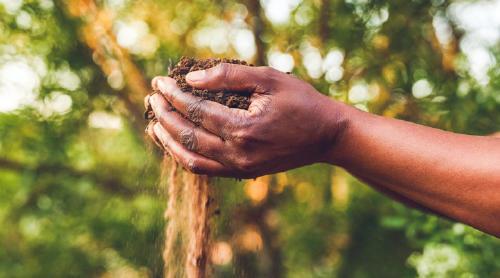 medioambiente tierra