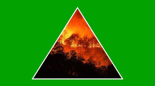Qué son los incendios forestales y cuáles son sus causas principales
